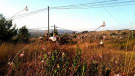 Kibbutz Migdal Oz