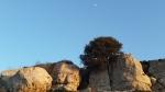 Mond über den Felsen