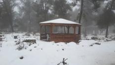 Im Naturreservat Oz veGaon