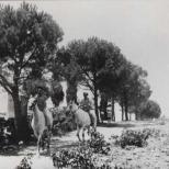 Im Kibbutz