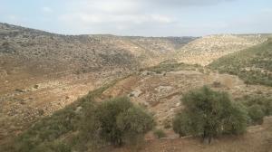 Sicht auf die Berge hinter Beit Arye