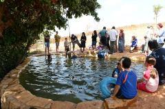Dolev-Wasserquelle, BInyamin-Gebiet. Quelle: Binyamin Tourism