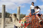 Kamelreiten in Samaria. Quelle: Shomron Tourism