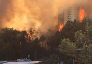 Feuer in einem Wohngebiet in Haifa. Quelle: Ma'ariv