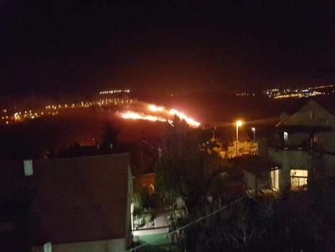NEWS: Waldbrände im Land